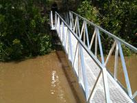 Pivoted pontoon walkway